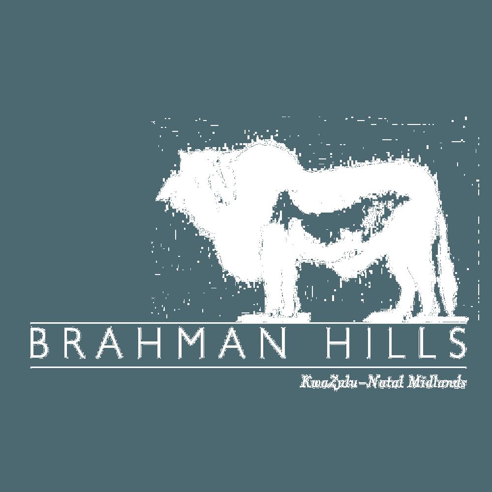 BrahmanHills1